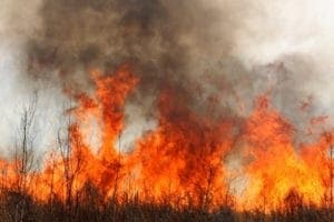 Inflammation Fire