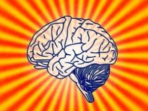 brain-78440_640