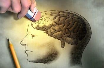 brain-pic-1