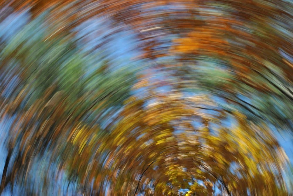 The Hidden Meaning of Dizziness
