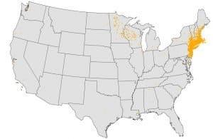 Babesia Map United States